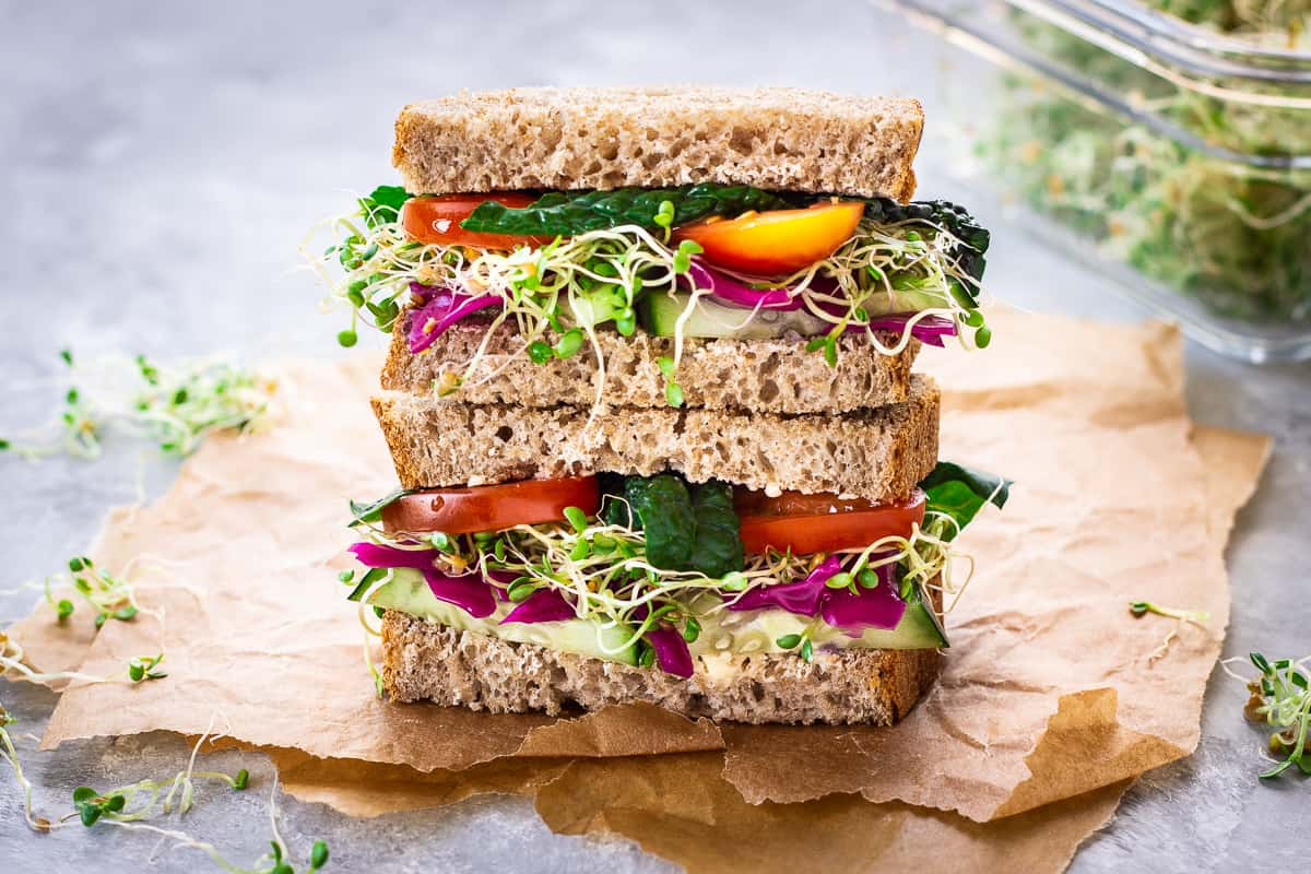 How to Grow Alfalfa Sprouts at home. Image shows a stacked sandwich on wholemeal bread packed with alfalfa sprouts, tomatoes, sauerkraut, cucumber and kale. The sandwich is on brown paper and there is a glass container of sprouts in the background.
