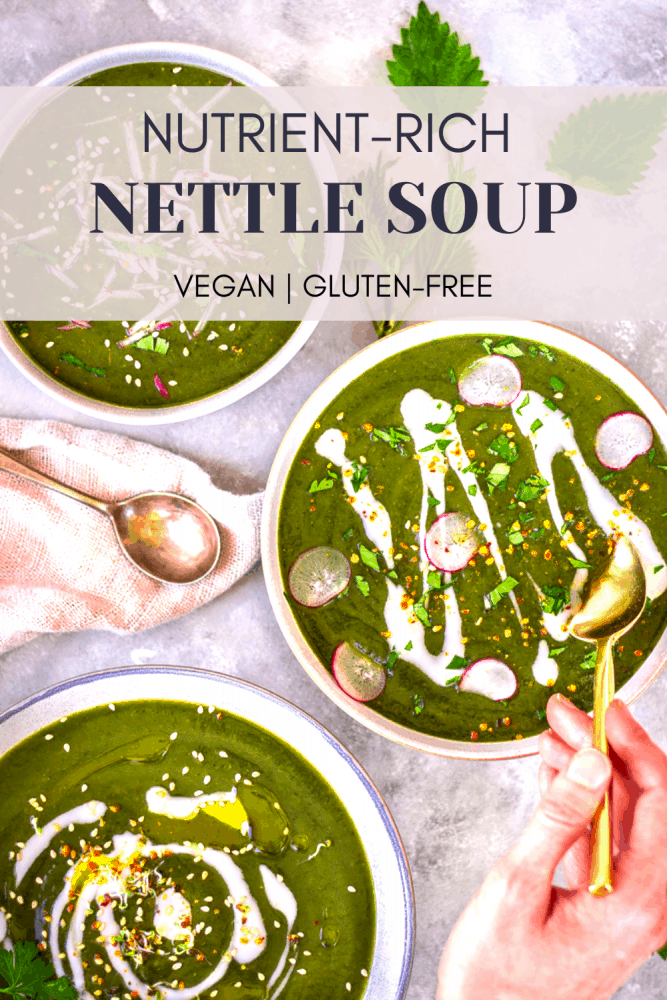 This easy nutrient-rich nettle soup is a wonderful way to transition to spring. Use your wild foraged stinging nettles for a boost of iron and natural antihistamines in this delicious springtime soup! #nettles #antihistamine #soup #spring #recipe