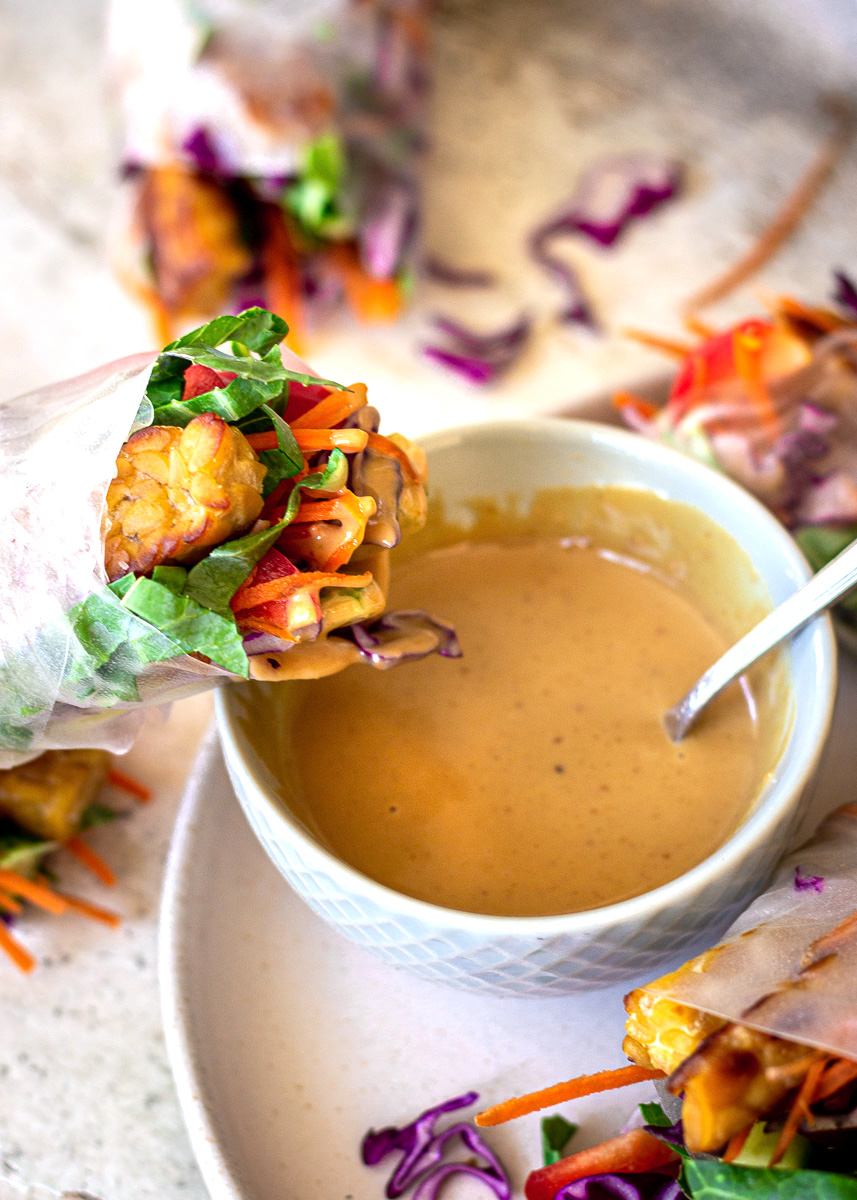 Close up shot of Vegan Spring Rolls with Peanut Sauce by Vancouver with Love